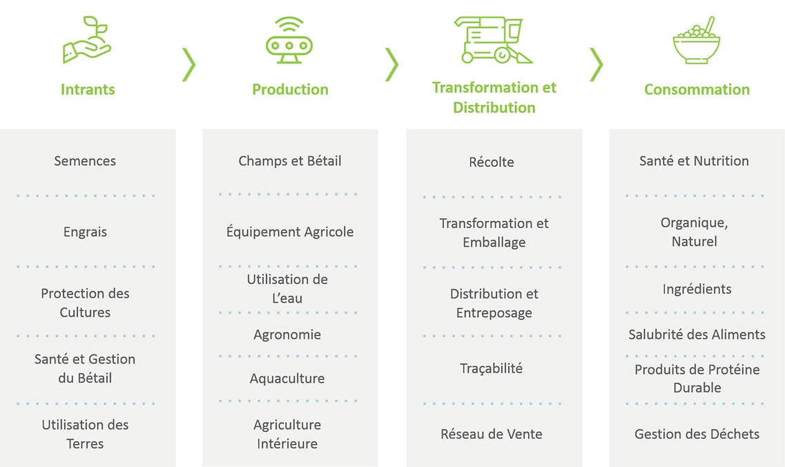 Agri Food Value Chain